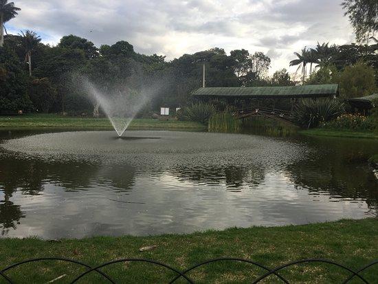 Jardín Botánico de Bogotá Jose Celestino Mutis: Mi visita al jardín este año