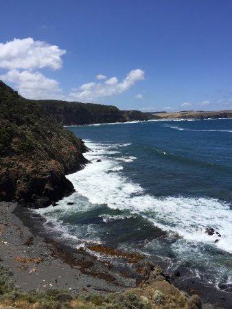 Cape Schanck, أستراليا: The rugged coast a short drive away, 5 km, or walk.