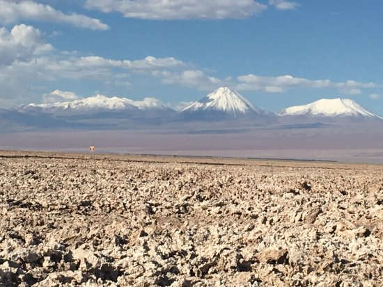 Explora Atacama - All Inclusive 사진