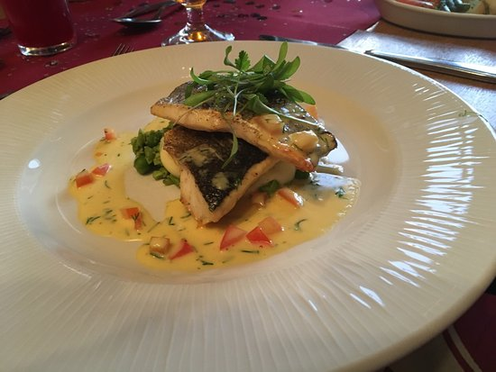 Lion Hotel Llandinam: These are just some of the photo's of the absolutely beautiful food, and fantastic service that