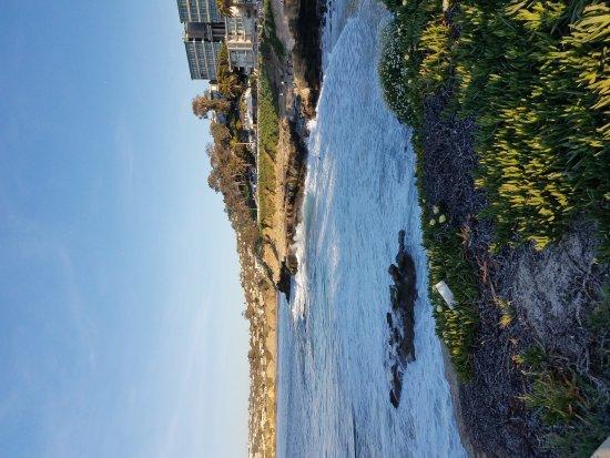 Photo of Beach La Jolla Cove at 1100 Coast Blvd, La Jolla, CA 92037, United States