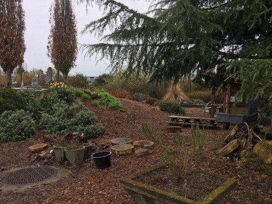 Magnuson Community Garden