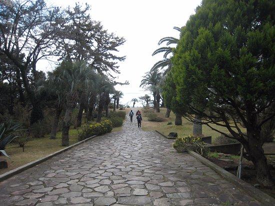Ohayashi Tembo Park