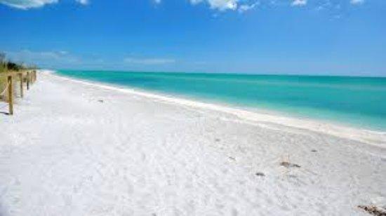 Barefoot Beach Preserve 1 Large Jpg