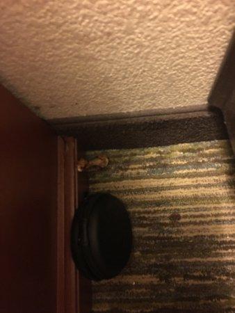 Candlewood Suites Athens-GA: photo0.jpg