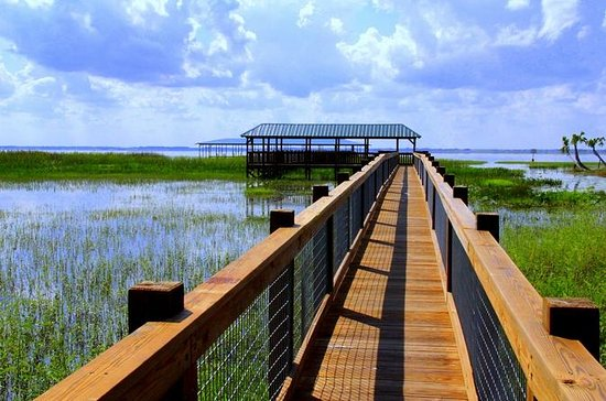 Orlando Wildlife Airboat Tour and Gatorland Admission Ticket