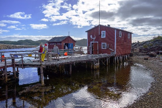 Prime Berth Fishing Museum: Explore the outside for hidden things