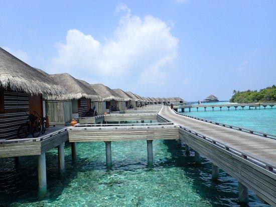Dusit Thani Maldives Photo