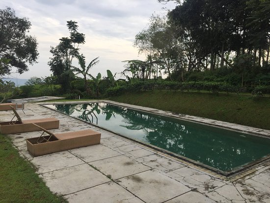 Tea Garden Resort Bandung: Tea garden resort