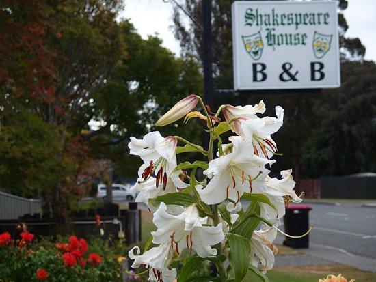 Shakespeare House-billede