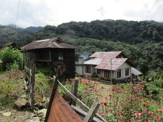 Kohima, India: The Dzuleke Homestay