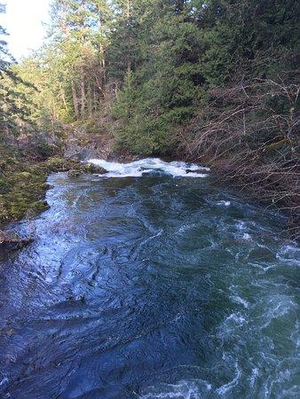 Little Qualicum Falls Provincial Park: photo2.jpg
