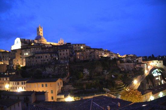 هوتل ألما دوموس: View from Alma Domus Hotel, Siena