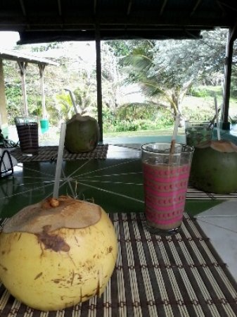 "Long Bay, Jamaika: Daily coconut water and chocolate ""juice"" smoothie"