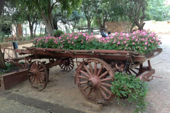 Magaliesburg, Sudáfrica: Lovely old wagon