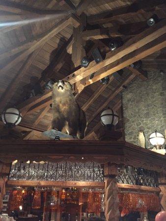 Grizzly Bar: photo1.jpg