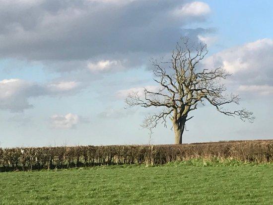 Danby, UK : photo2.jpg