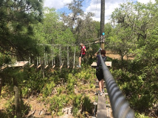 TreeUmph! Adventure Course: photo4.jpg