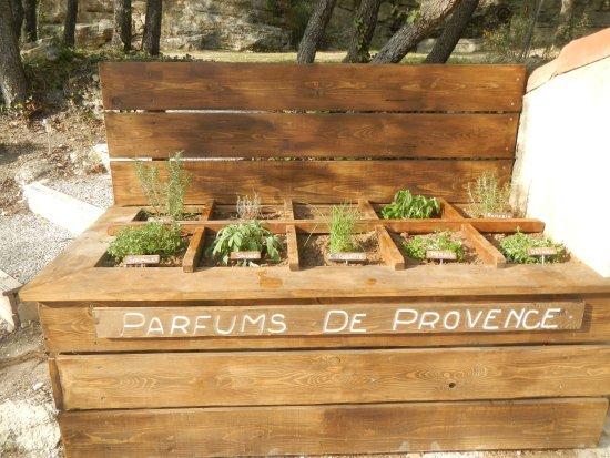 Cucuron, Frankrike: Jardin aromatique à votre disposition pour parfumer vos grilades