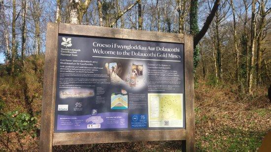 Llanwrda, UK: Dolaucothi Gold Mines