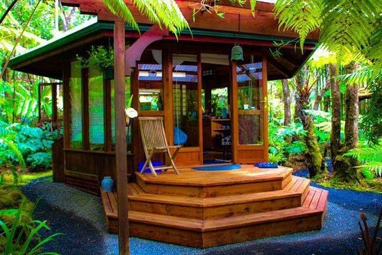 Volcano Rainforest Retreat: FB_IMG_1491109486393_large.jpg