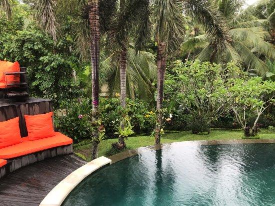 Soulshine Bali: photo3.jpg