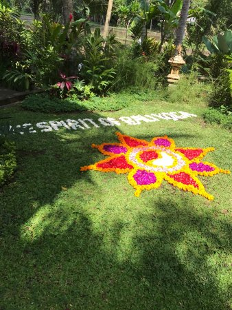 Soulshine Bali: photo9.jpg
