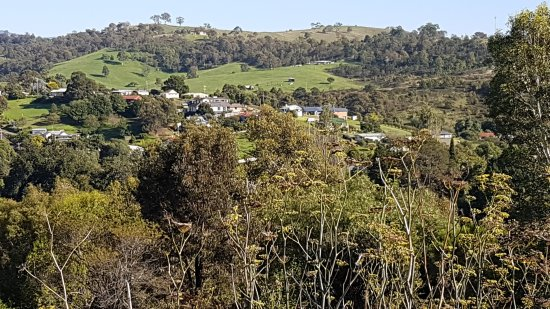 Candelo, Australia: 20170401_095006_large.jpg