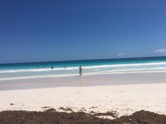 Pink Sands Beach: photo0.jpg
