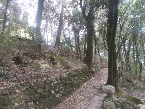 Parco Regina Margherita