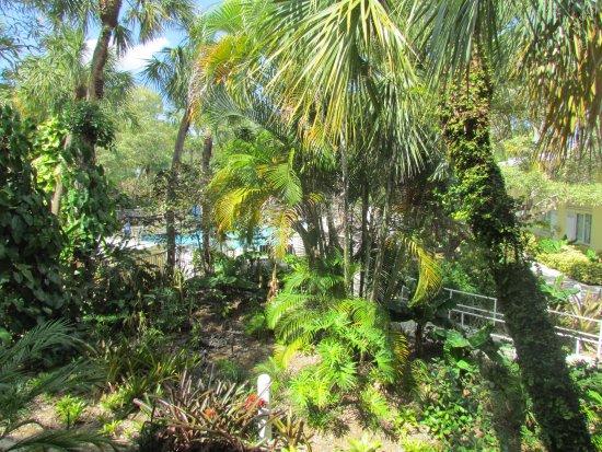 Hotel Indigo Miami Lakes Photo