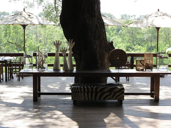 Londolozi Private Game Reserve: I loved my first experience on safari. The Londolozi Camps give you a feeling of privacy and exc