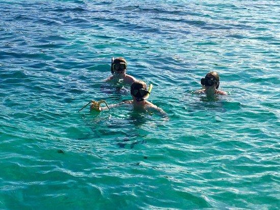 Dive Abaco!: photo1.jpg