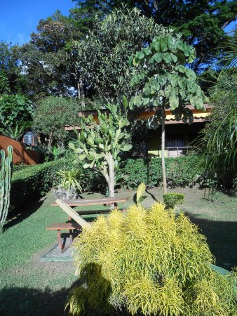 Hotel Cipreses Monteverde Costa Rica Resmi