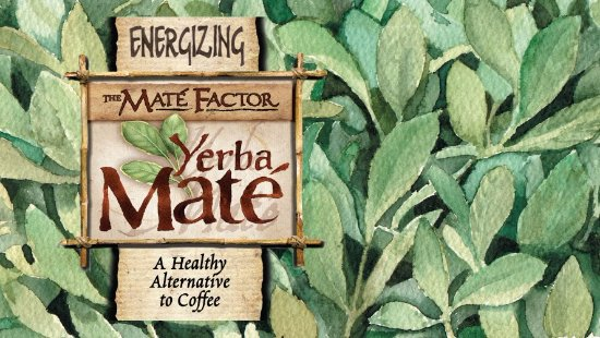 Coxsackie, NY: Yerba Mate is what South Americans drink for energy and health.