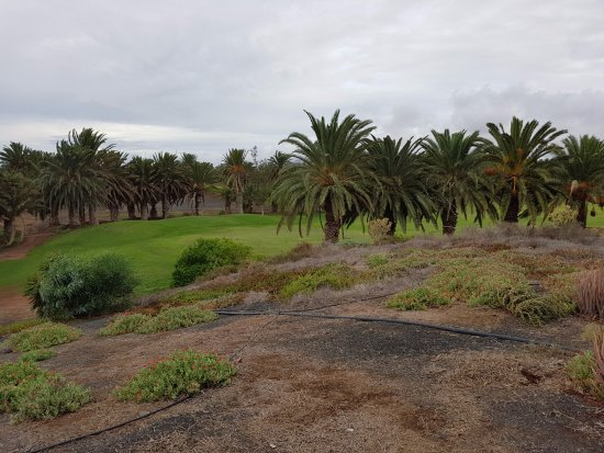 Lanzarote Golf Resort : View of the course