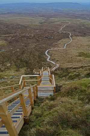 Abocurragh Farm Bed and Breakfast: The local Culcaigh boardwalk-so popular now with our guests! For best prices for staying with us