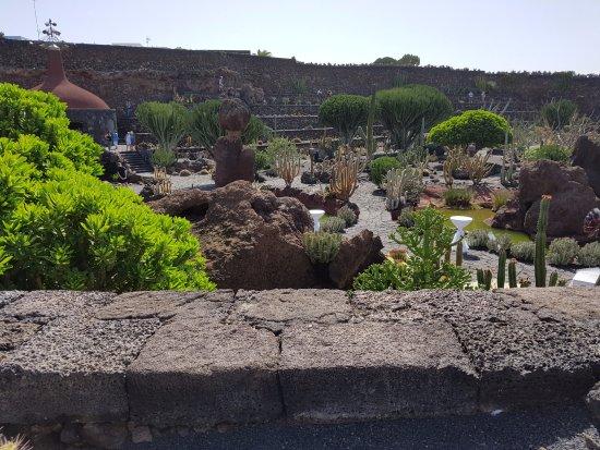 Jardin de cactus 10 picture of jardin de cactus guatiza for Jardines con cactus