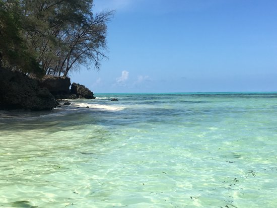 Pongwe Beach Hotel: photo3.jpg