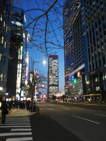 Hotel Ryumeikan Tokyo: View from the entrance of the hotel
