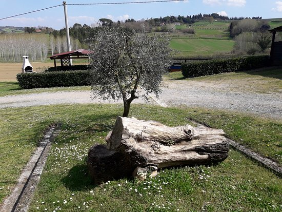 Touristic Farm Podere Chiasso Gherardo Photo
