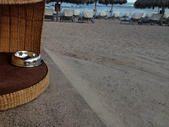 Four Seasons Resort Punta Mita: Pet friendly - even the beach!