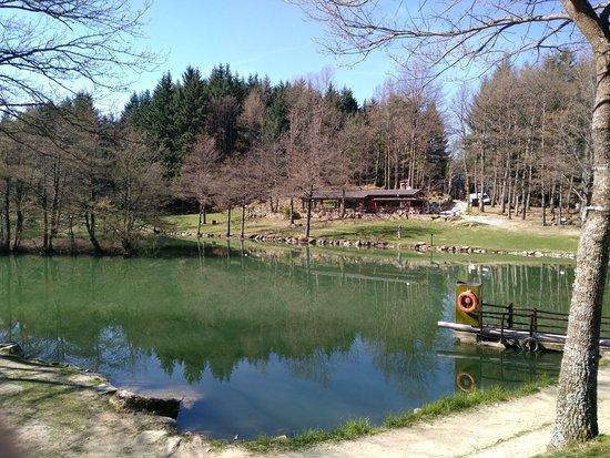 panorama del lago - Picture of Lago Pontini, Bagno di Romagna ...
