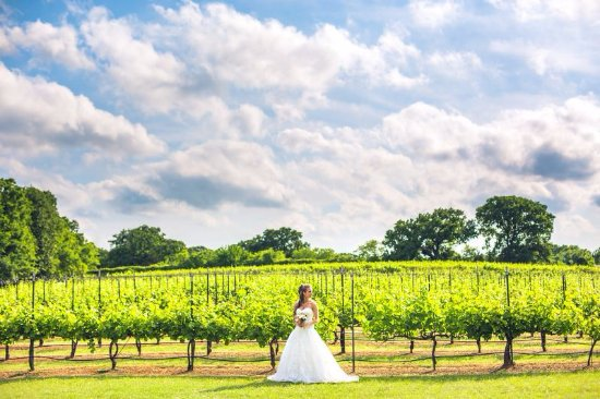 Burleson, TX: Vineyard Weddings.  Blake Hannah  www.hannahimage.com