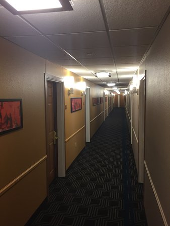 TownePlace Suites Detroit Sterling Heights: Our 2017 post renovated rooms...very sheik decor, do-it-yourself spacing..very modern update fac