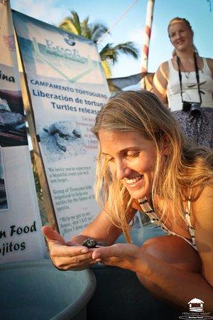 Roberto's Bistro : Liberación de tortugas