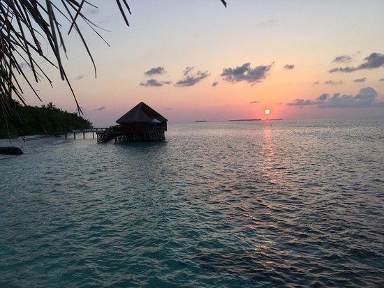 Mirihi Island Resort: Tolle Barfoot Insel mit 100 Prozent Erholungseffekt. Schnorcheln, Essen, Komfort, Zimmerservice