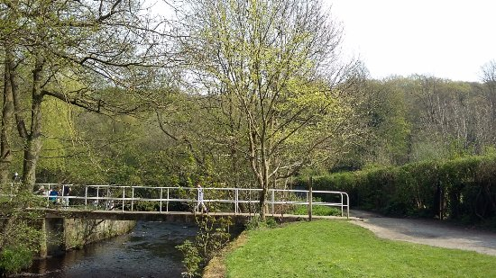Rivelin Valley Nature Trail: View of the bridge