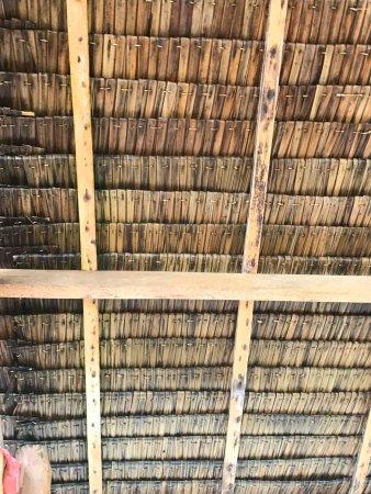 San Isidro, Philippines: Bamboo Garden