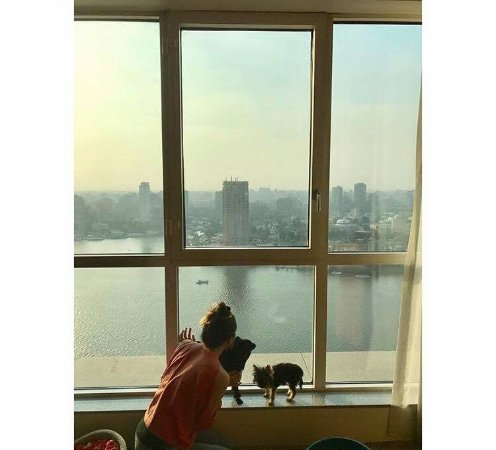 Four Seasons Hotel Cairo at Nile Plaza: View and pet amenities